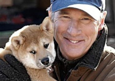 Dog is hero in film about Japan tale-Richard Gere