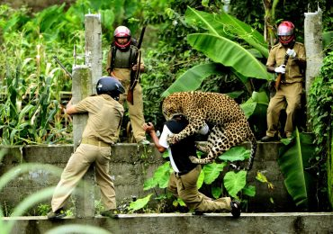 Leopard attacked 11 in fierce fight at Indian village