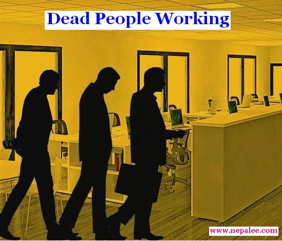 Dead People Working? (Picture has no relation with this article. Published for illustration purpose only)