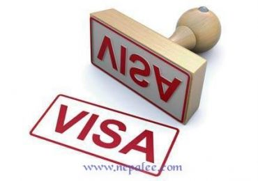 New visa system to be launched in UAE
