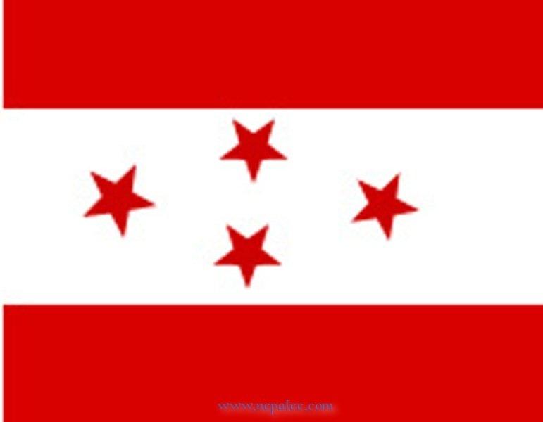Nepali congress party flag