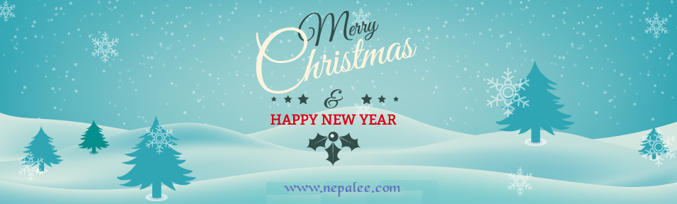Wish you Merry Christmas and Happy New Year 2015