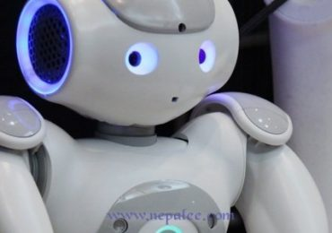 Social Robot to company elderly people soon