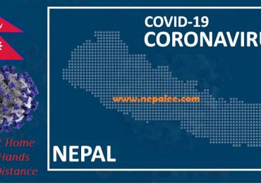 Corona Virus Death toll Crossed 275000 Worldwide